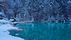 Beautiful Blue Lake Snowed Forest and House
