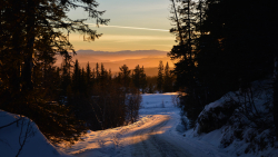 Beautiful Winter Forest Road and Sunset