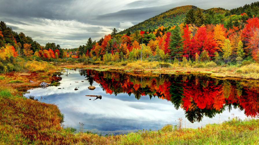 Crystal lake in autumn forest