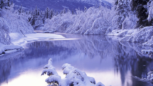 Snowy Lake and Forest