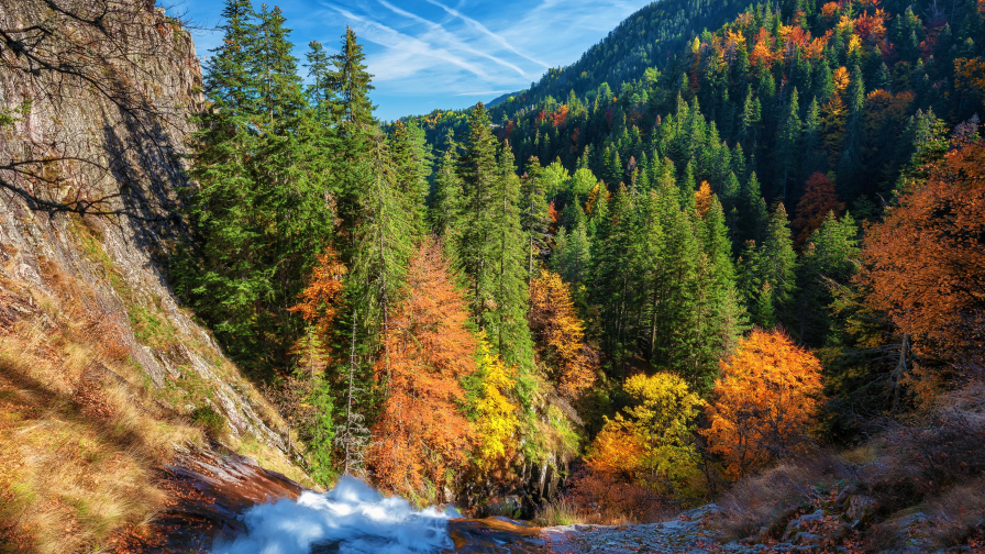 Wonderful Autumn Forest in Mountain Valley