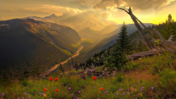 Wonderful Mountain Valley Green Grass and Sunset