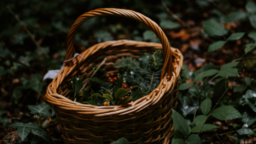 Brown Woven Basket with Red Berry on Green Leaves